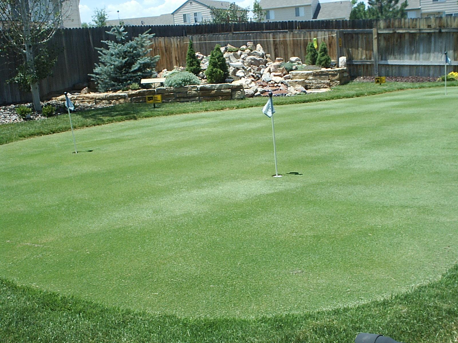 putting greens com backyard golf green photos