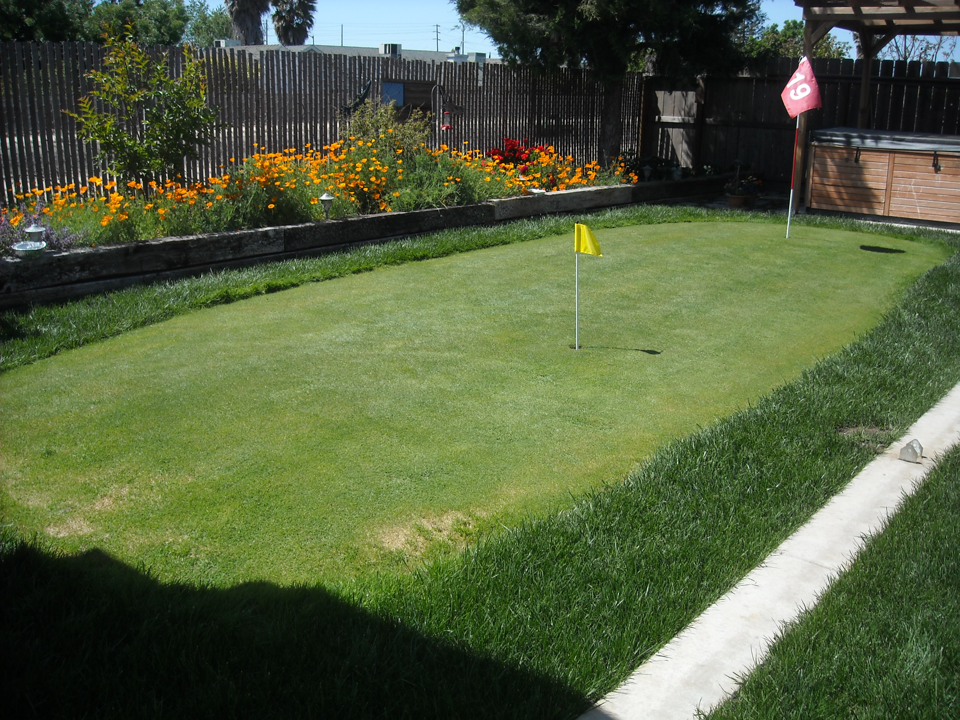 Superbe Outstanding Backyard Putting Green Photo